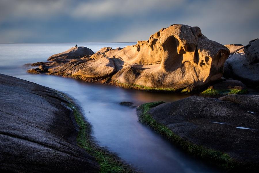 Lleó Marí despertantse