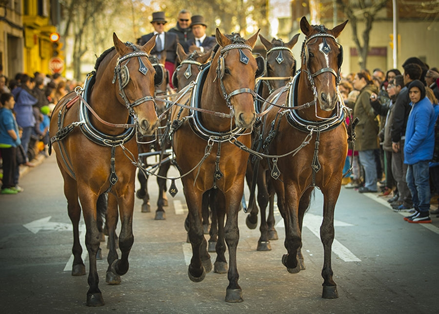 Tres Tombs perillos