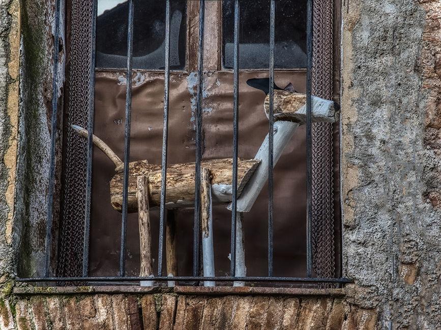 Balcó amb gos