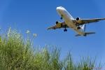 Mirant avions