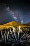 Milky WayMilky Way
