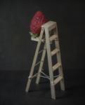 escalada de fresa