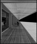 línies
