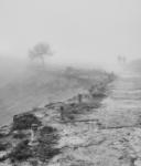Caminos inciertos