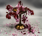 copa de flors