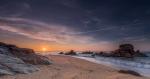 Corbs marins a la sortida del Sol