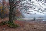 Montseny - otoño del 2020