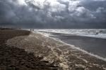 Passejant per la platja