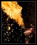 Plutja de foc