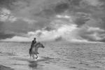 Cavalcan pel mar