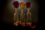 Tres Roses...