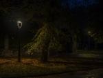 Llum en la foscorLlum en la foscor
