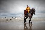 Pesca amb cavalls
