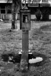 Telèfon públic